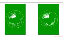 AFRICAN UNION BUNTING - 9 METRES 30 FLAGS